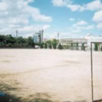 千島公園 の写真 (1)