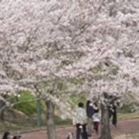 駕与丁公園 の写真 (2)
