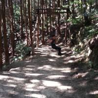 奥水間アスレチックスポーツ の写真 (3)