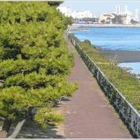 京浜島つばさ公園 (けいひんじまつばさこうえん) の写真 (3)