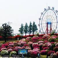 常盤公園 の写真 (2)