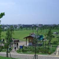 神明公園 の写真 (2)