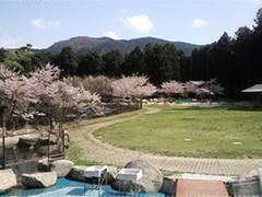 福岡にある子連れにおすすめの動物園10選!動物と楽しくふれ合おう!