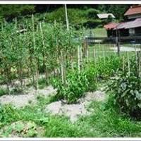 大田原自然の家 の写真 (2)