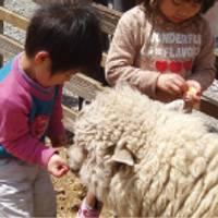 チロルの森 信州塩尻農業公園 の写真 (3)