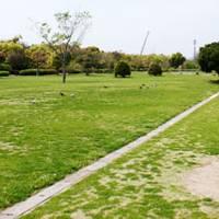 河西公園 の写真 (1)
