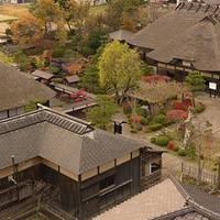 天鷺村 (あまさぎむら)