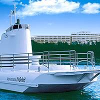 海中展望船ノア の写真 (2)