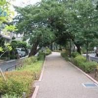 呑川緑道・呑川親水公園(のみかわ)