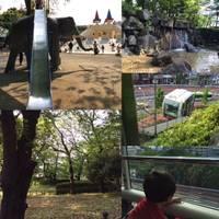 飛鳥山公園 の写真 (3)