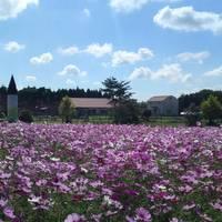 滋賀県畜産技術振興センター の写真 (3)