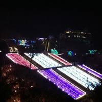 サンリオキャラクターパーク ハーモニーランド の写真 (2)