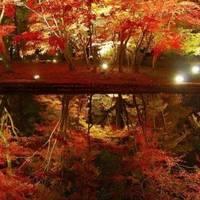 曽木公園 の写真 (1)