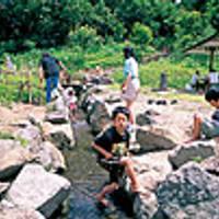 磐梯ふるさとの森公園(おおるり公園)