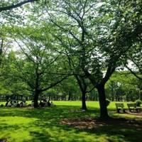 ほなmamaさんが撮った 元渕江公園 の写真