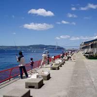 須磨・平磯海釣り公園 の写真 (3)