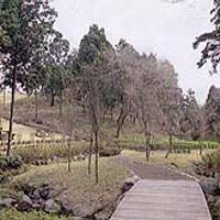 愛鷹広域公園 の写真 (3)