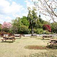 筑波実験植物園 の写真 (3)
