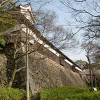 福岡城跡 の写真 (1)