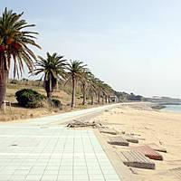 宇久サンライズマリーンパーク(スゲ浜海水浴場)
