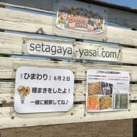 こうちゃんちの野菜 in 世田谷