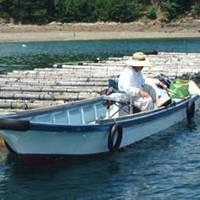 浜島釣センター の写真 (3)