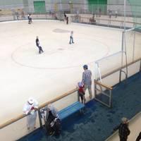 愛・地球博記念公園(モリコロパーク)  アイススケート場
