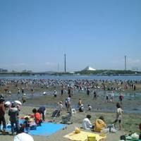 海の公園 潮干狩り場