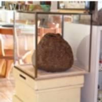 養蜂博物館 の写真 (2)