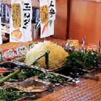 山かつ 屋島店