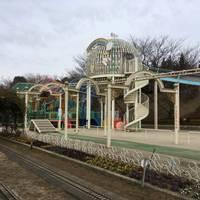 BIBIさんが撮った 川口市立グリーンセンター の写真