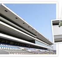 京都競馬場 の写真 (2)