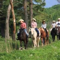 大和ホースパーク 桜川・ホーストレッキング(乗馬) の写真 (3)