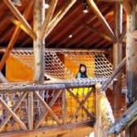 踊場公園こどもログハウス(ニャンぱく砦) の写真 (3)