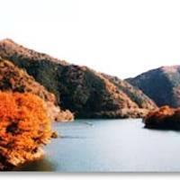 鱒淵ダム(ますぶち)