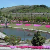 大仁瑞泉郷(MOA大仁農場) の写真 (3)