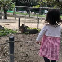 愛知牧場 の写真 (1)