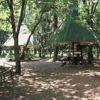 豊里ゆかりの森 の写真 (2)