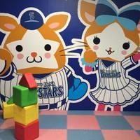 横浜スタジアム の写真 (2)