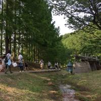 *mislea*さんが撮った あけぼの子どもの森公園 の写真