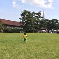 明治神宮 の写真 (2)
