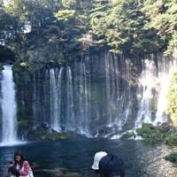白糸の滝 の写真 (2)