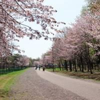 春光台公園