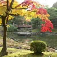 芦城公園(ろじょうこうえん)