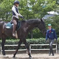 乗馬クラブクレイン東京