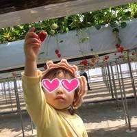 苺のマルシェ