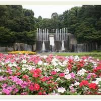 川口市立グリーンセンター の写真 (2)