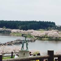 平筒沼ふれあい公園(びょうどうぬまふれあいこうえん) の写真 (2)