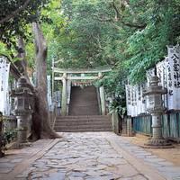 蒲郡竹島(八百富神社) の写真 (3)