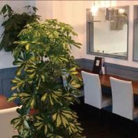 ベーカリーレストラン KOKAGE (コカゲ) の写真 (2)